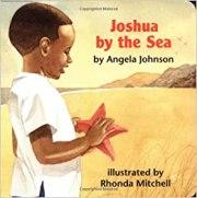 Joshua by the Sea by Angela Johnson
